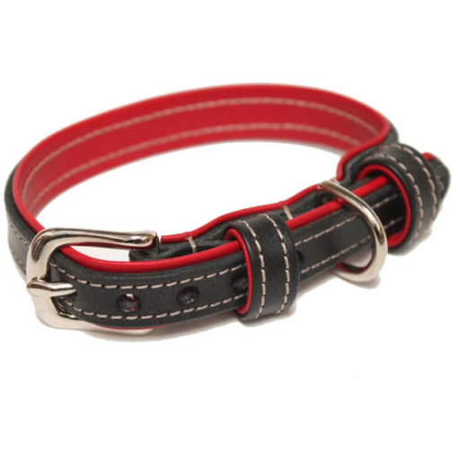 Black and Red Leather Dog Collar